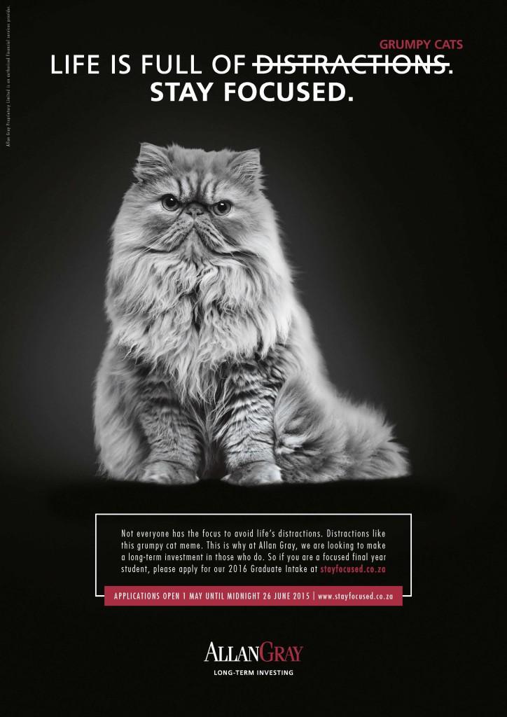 79691-Graduate Recruitment (Cat) 594x420